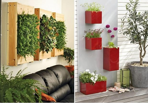 ideias jardins verticais : ideias jardins verticais:Paisagismo: Plantas ornamentais despoluidora