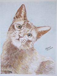 Desenho de Jorge Bohaczuk