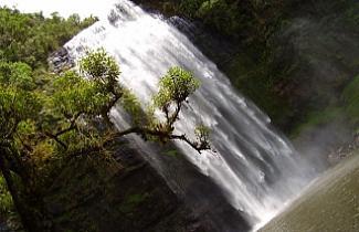 Reprodução - Cachoeira Puxa Nervos