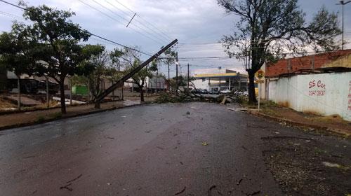 Adriano Silva - Foto enviada por Adriano Silva mostra destruição na zona norte de Londrina
