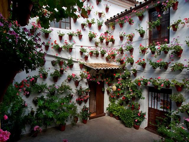 Competi o de vasos enche cidade espanhola de flores e for Decoracion cordoba