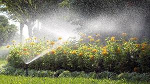 H� diferentes formas para a irriga��o do jardim. A escolha e aplica��o de um sistema espec�fico � capaz de irrigar com precis�o e de modo eficiente.