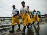 OMS comemora menos de 100 casos de ebola esta semana na �frica Ocidental