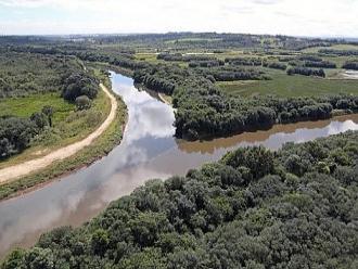 Reserva do Bugio: Curitiba ganha maior ref�gio urbano de vida silvestre do Pa�s