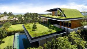 Telhado verde favorece o isolamento t�rmico e dispensa o uso do ar condicionado