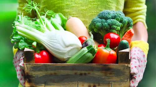 Primavera nutricionista indica o consumo de alimentos da for Que plantas se siembran en un huerto