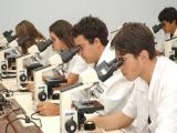 UEL promove oficina para estudantes do ensino m�dio