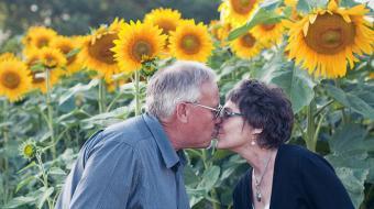 Depois de perder esposa para o c�ncer, homem planta milhares de girass�is