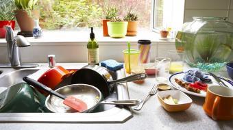 Pia da cozinha tem 100 mil vezes mais micro-organismos que a do banheiro
