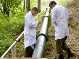 UEL recebe inscri��es para curso de Per�cia Ambiental
