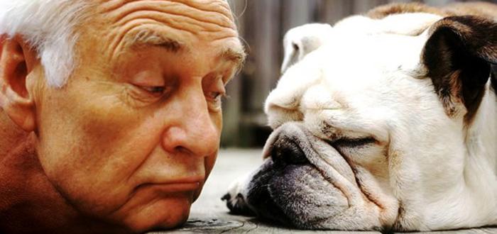 Prefeitura de Londrina inicia projeto que leva cães a instituições para idosos