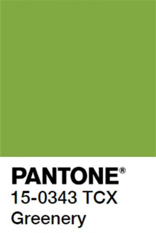 Resultado de imagem para verde greenery