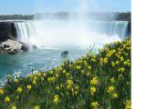 Conheça alguns pontos turísticos famosos no Canadá
