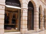 ONG de proteção animal compra ação de grupo dono da Louis Vuitton; entenda!