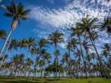 Pesquisa traça o perfil do viajante doméstico brasileiro