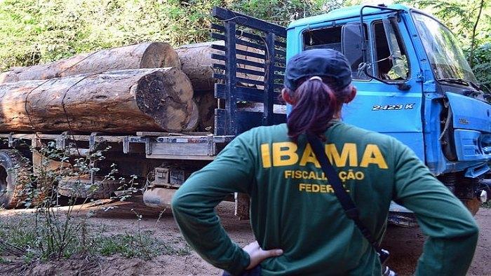 Ibama quer converter multa em ação social