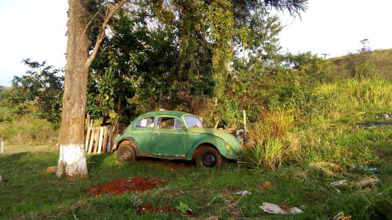 Walkiria Vieira - Na zona sul: 'Fuscão' acha que porque é verde,  ninguém está vendo ele ali no meio do mato